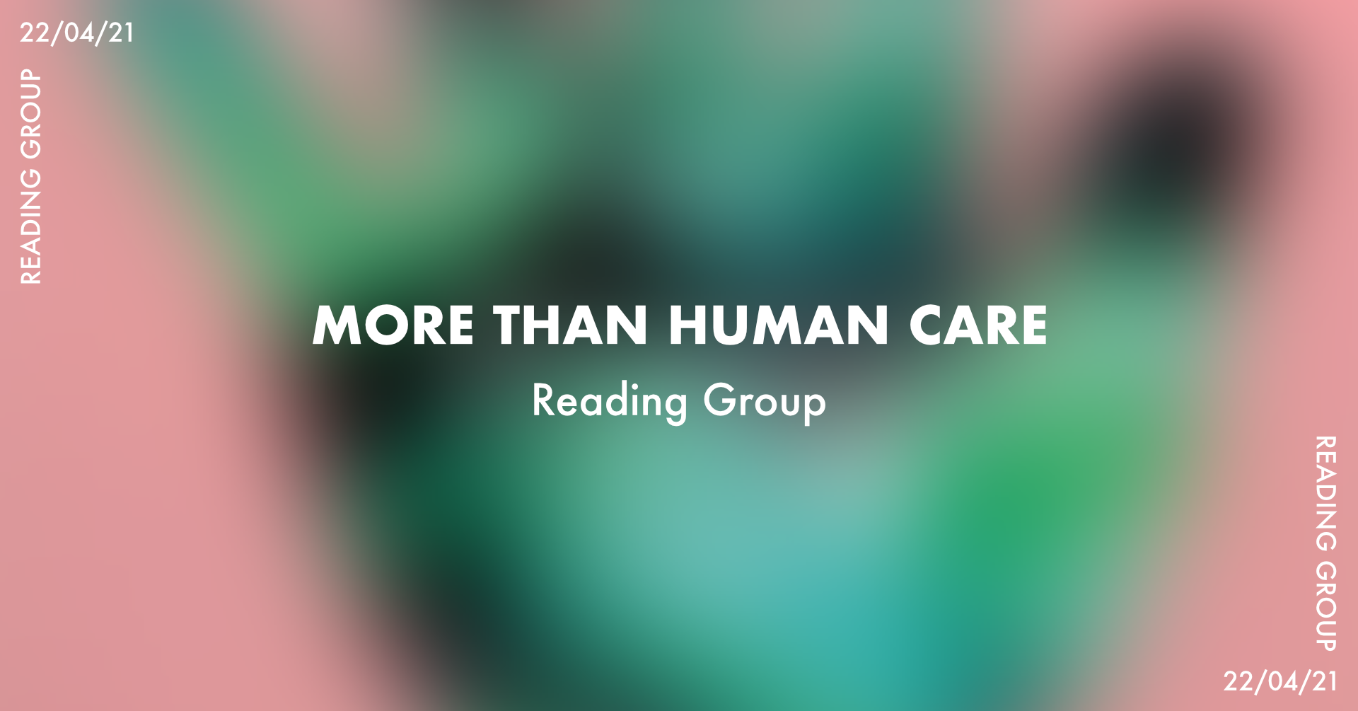 More than Human Care reading group image